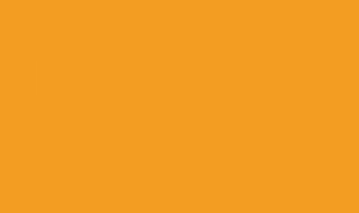 Logo de l'entreprise de chauffeur privé VTC-TNP